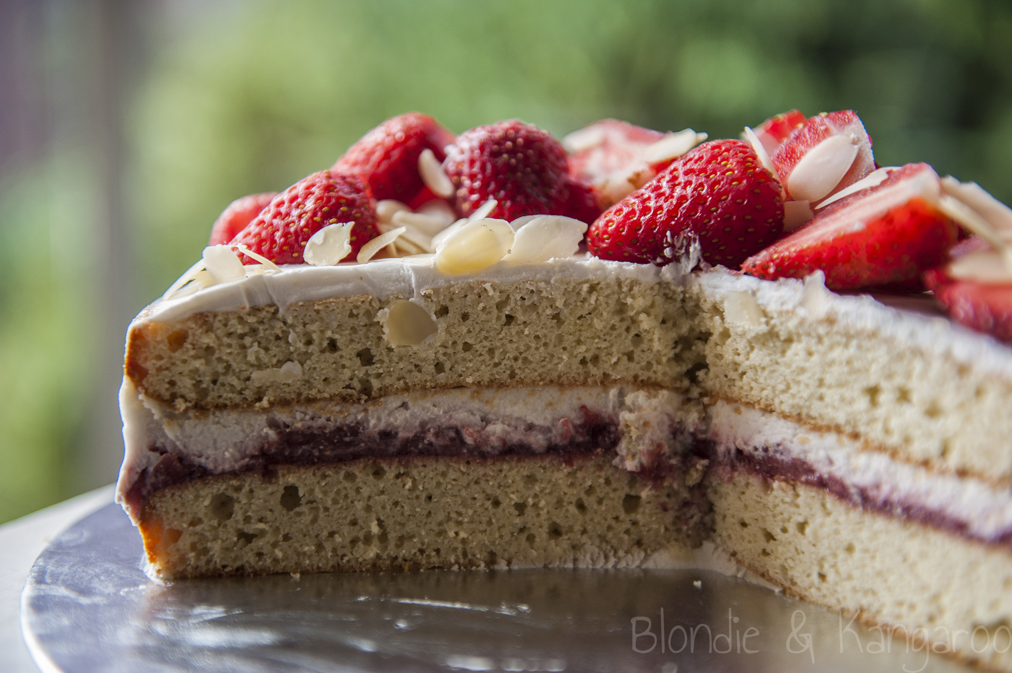 Coconut Birthday Cake Lactose Free Gluten Free Sugar Free