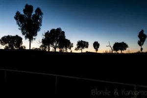 Kata Tjuta - Przygody na pustyni część trzecia/Kata Tjuta - Uluru and Aussie outback in 5days