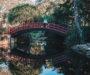 Wollongong, niedocenione miasto tuż za rogiem Sydney
